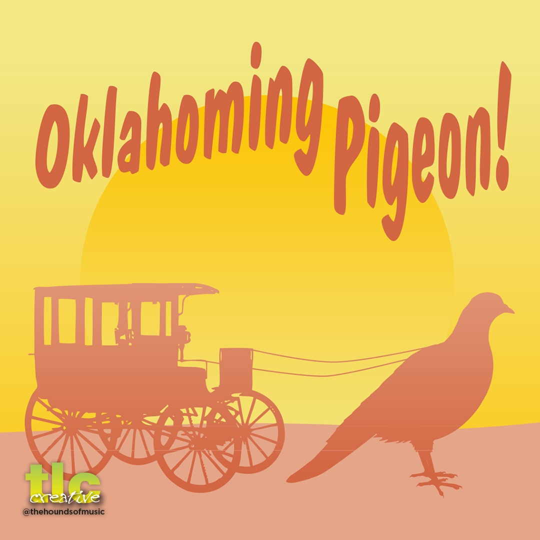 Hounds of Music - Oklahoming Pigeon