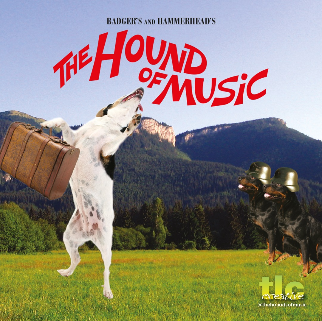 Hound Of Music